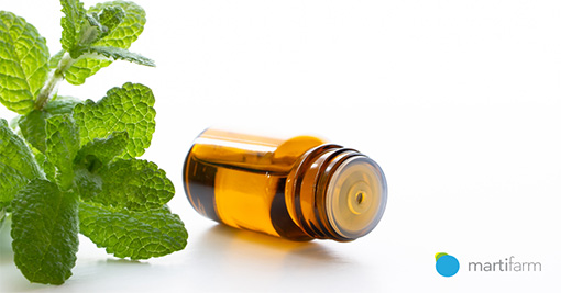 Aromatherapy – essential oils for improving health